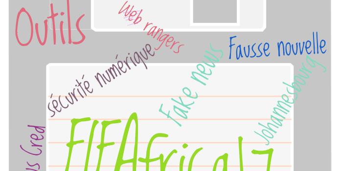 La richesse d'un savoir acquis lors du FIFAfrica17 à Johannesbourg