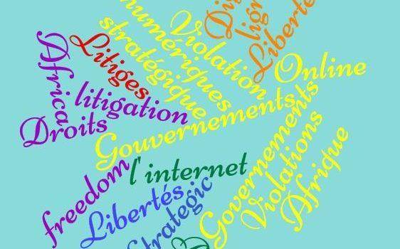 Litige stratégique des droits numériques : poursuivre les gouvernements lorsque les libertés en ligne sont violées